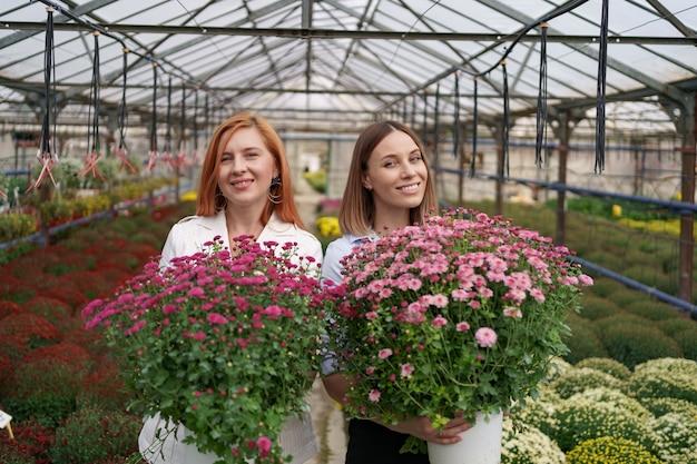 Zwei entzückende damen, die mit einem bündel rosa chrysanthemen in einem schönen blühenden gewächshaus mit glasdach aufwerfen.