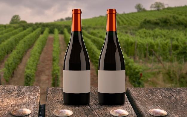 Zwei flaschen wein im weinberg