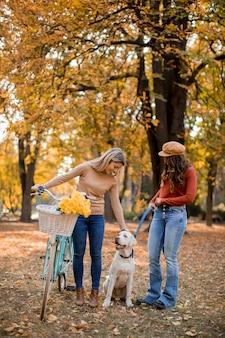 Zwei freundinnen, die in den gelben herbstpark mit hund und fahrrad gehen