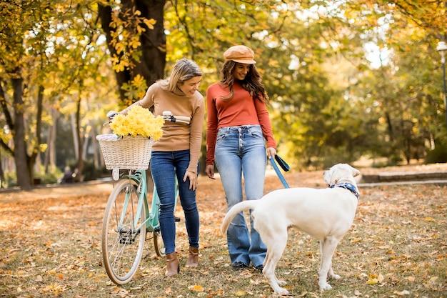 Zwei freundinnen, die mit hund und fahrrad im gelben herbstpark spazieren gehen