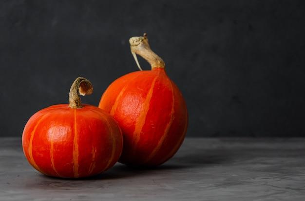 Zwei frische orange kürbisse auf einem dunklen betonhintergrund. halloween-konzept.