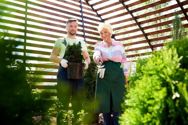 Zwei gärtner im botanischen gewächshaus