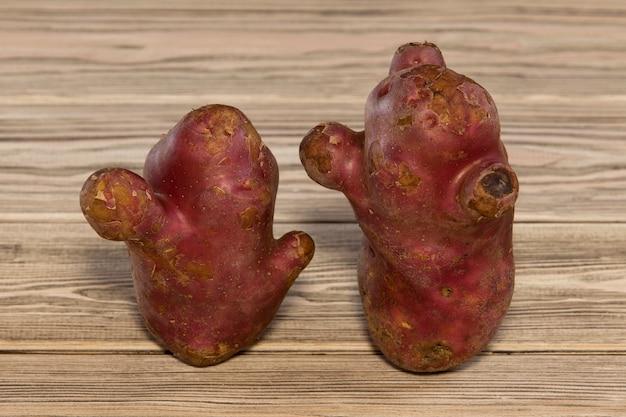 Zwei hässliche kartoffeln. lustiges gemüse sieht aus wie ungewöhnliche gesprächspartner.