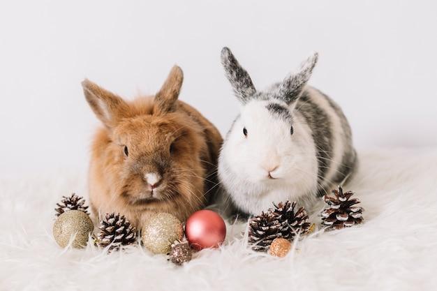 Zwei hasen mit weihnachtsdekoration