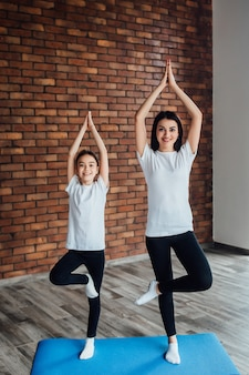 Zwei hübsche schwestern, die morgengymnastik mit blauer yogamatte machen.