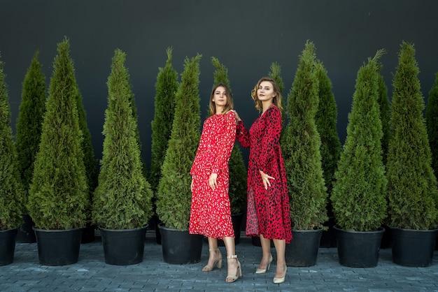Zwei junge attraktive frau in den roten modekleidern, die im freien aufwerfen