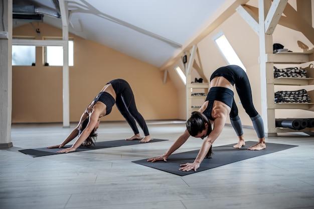 Zwei junge flexible yogifrauen in der nach unten gerichteten hundeyogahaltung. yoga studio interieur.