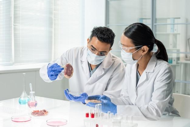 Zwei junge interkulturelle forscher oder kliniker in weißen kitteln und handschuhen untersuchen die merkmale einer der proben von rohem gemüsefleisch im labor