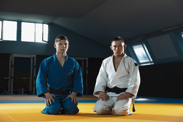 Zwei junge kaukasische judo-kämpfer in weißem und blauem kimono mit schwarzen gürteln, die selbstbewusst im fitnessstudio posieren, stark und gesund.