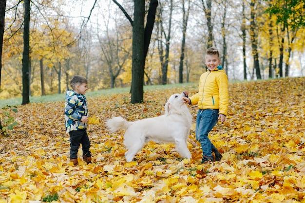 Zwei jungen, die spaß haben, mit einem hund in einem herbstpark zu spielen