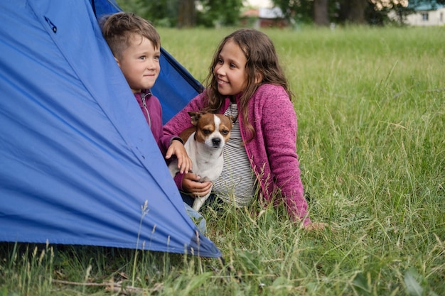 Zwei kinder spielen mit chihuahua-hund im zelt. fröhliche familienwanderung im sommer. geschwister lieben. mit haustieren reisen. genießen sie die gemeinsame zeit. foto in hoher qualität