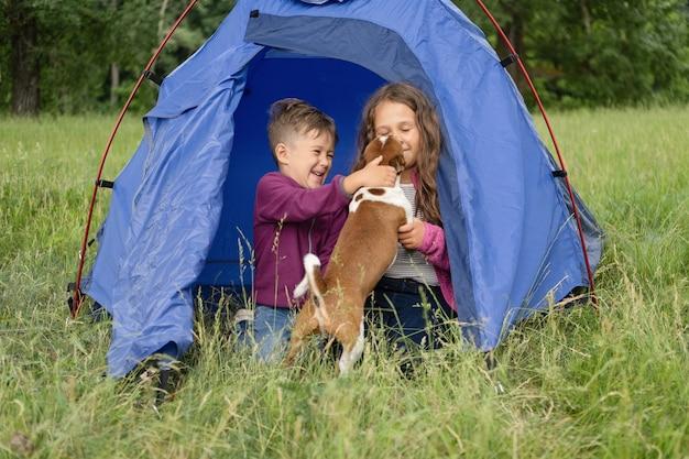 Zwei kinder spielen mit chihuahua-hund im zelt. fröhliche familienwanderung im sommer. geschwister lieben. reisen mit haustieren hochwertiges foto