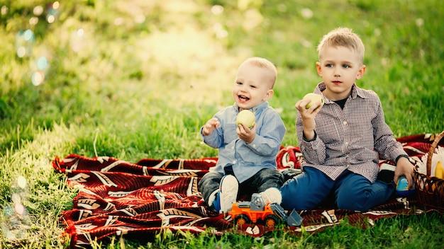 Zwei kleine brüder, die apfel im park sitzen und essen.