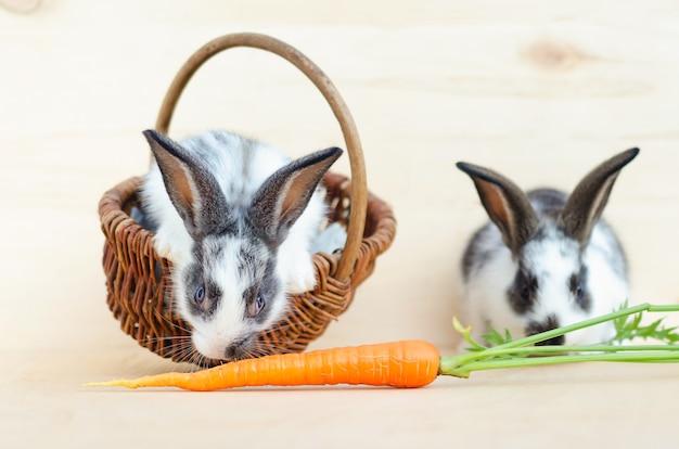 Zwei kleine kaninchenbabys, häschen, die salatblätter und karotten im korb essen. futter für nagetiere, haustier. fröhliches osterkonzept.