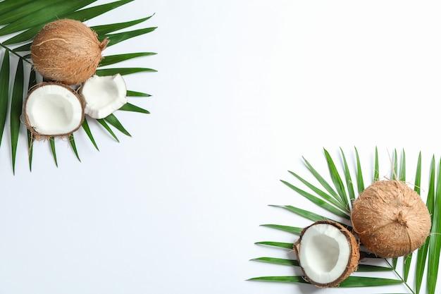 Zwei kokosnuss mit palmzweig auf weiß