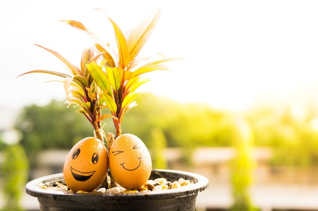 Zwei lächeln ei sitzen unter baum