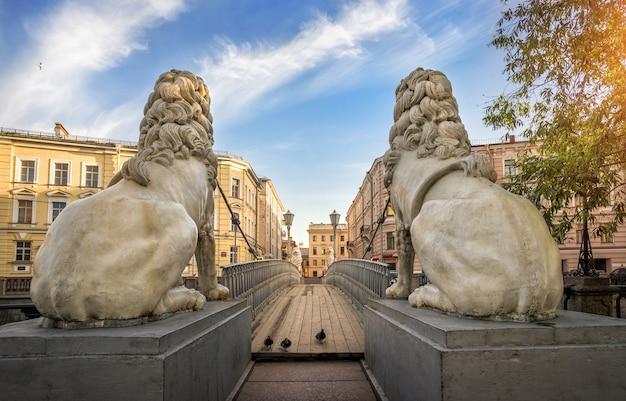Zwei löwenskulpturen von hinten und drei tauben auf der brücke in st. petersburg