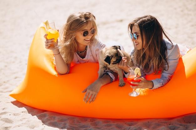 Zwei mädchen mit coctails und kleinem hund, die auf poolmatratze liegen