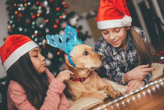 Zwei mädchen und der hund, die vor dem weihnachtsbaum legen