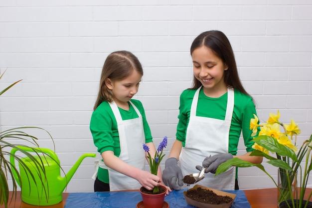 Zwei mädchenschwestern in grünen t-shirts und schürzen verpflanzen blumen