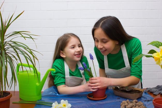Zwei mädchenschwestern in grünen t-shirts und schürzen verpflanzen blumenmädchen, die blumen schnüffeln
