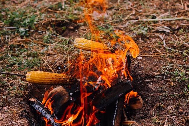 Zwei metallspieße mit aufgespießtem mais werden über dem feuer gehalten