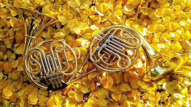 Zwei musikinstrumente horn auf gelben blättern