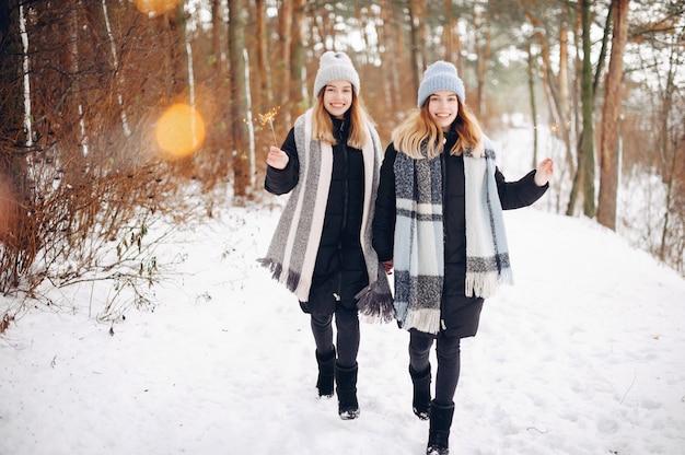 Zwei nette mädchen in einem winterpark