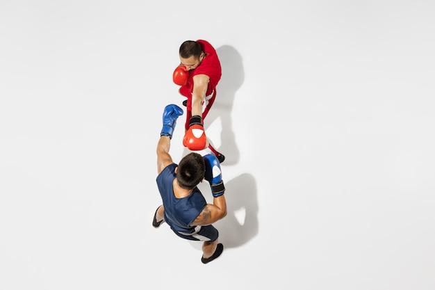 Zwei professionelle boxer boxen isoliert auf weißem studiohintergrund, aktion, ansicht von oben. ein paar muskulöse kaukasische sportler des sitzes kämpfen. konzept für sport, wettbewerb, aufregung und menschliche emotionen.