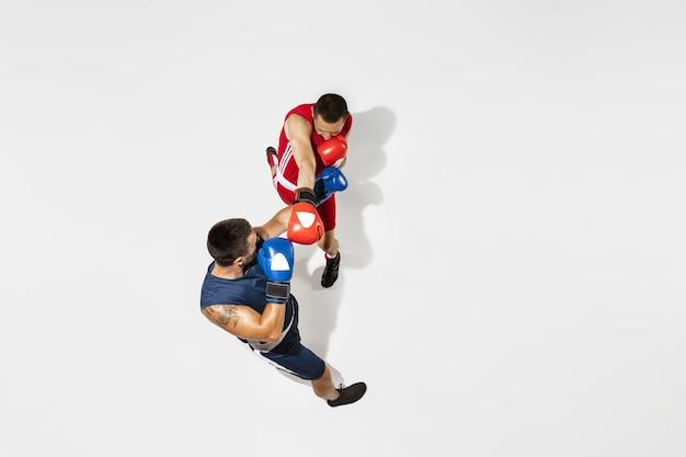 Zwei professionelle boxer boxen isoliert auf weißem studiohintergrund, aktion, ansicht von oben. paar muskulöse kaukasische athleten des sitzes kämpfen. konzept für sport, wettbewerb, aufregung und menschliche emotionen.