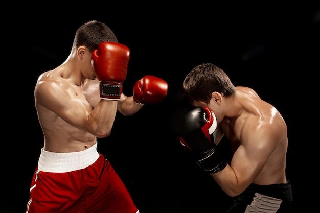 Zwei professionelle boxerboxen auf schwarz