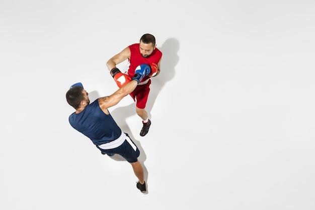 Zwei professionelle boxerboxen lokalisiert auf weißem studiohintergrund, aktion, draufsicht. paar fit muskulöse kaukasische athleten kämpfen.