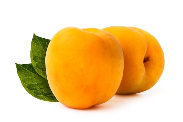 Zwei reife aprikosen auf weißer nahaufnahme.