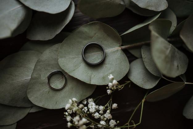 Zwei ringe auf herzförmigen grünen blättern