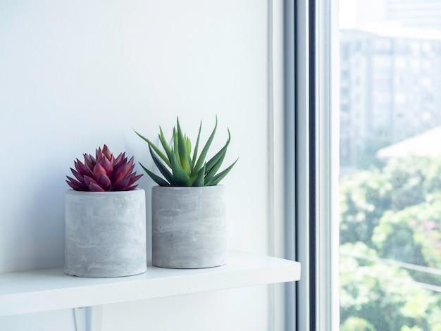 Zwei runde betonpflanzentöpfe mit roten und grünen sukkulenten auf weißem holzregal an weißer wand in der nähe des glasfensters. kleiner diy zementübertopf für kakteen, sukkulenten oder blumen.
