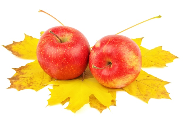 Zwei schöne äpfel auf herbstahornblättern, isoliert auf weißem hintergrund