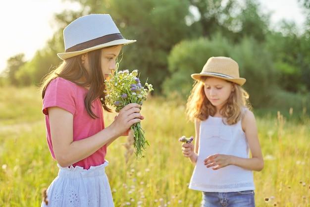 Zwei schöne hübsche mädchenkinder reißen wildblumen auf sonniger wiese, malerische landschaft, goldene stunde. kindheit, sommer, natur, schönheit, kinderkonzept