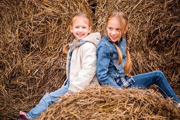 Zwei schwestern posieren vor dem hintergrund eines heuhaufens