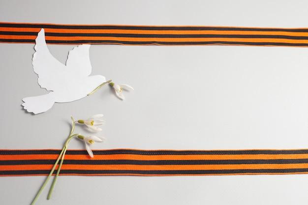 Zwei st. georgsbänderzwischen ihnen ist eine weiße taube als friedenssymbol mit einer blume im schnabel