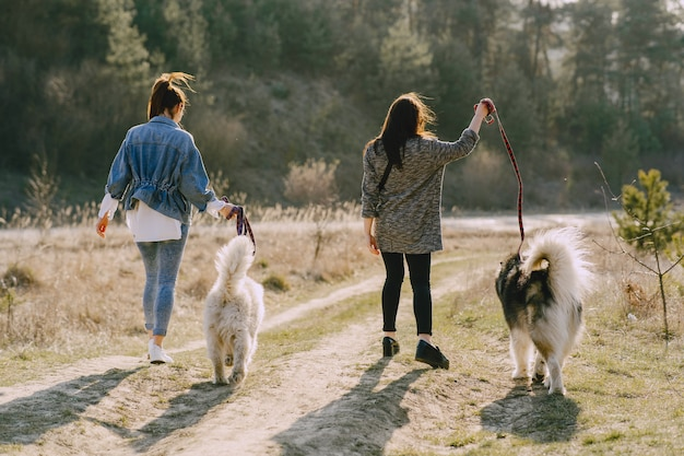 Zwei stilvolle mädchen in einem sonnigen feld mit hunden