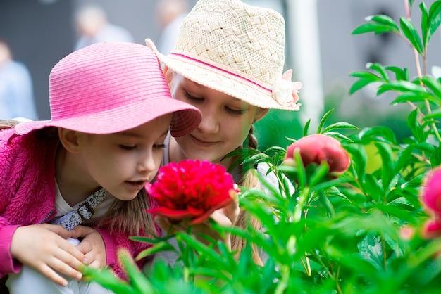 Zwei süße kleine mädchen, schwestern oder geschwister, die mit violetten blumen im garten spielen