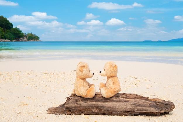 Zwei teddybären, die auf dem bauholz mit seeansicht sitzen
