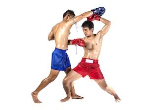 Zwei thailändische Boxer, welche die traditionelle Kampfkunst, lokalisiert auf weißem Hintergrund ausüben