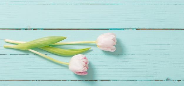 Zwei tulpen auf hölzernem hintergrund der blauen minze