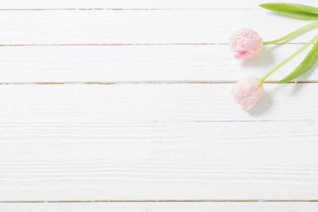 Zwei tulpen auf weißem hölzernem hintergrund