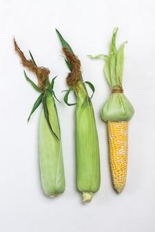Zwei ungeschälte maiskolben mit blättern. geschälte maiskolben. weißer hintergrund. flach legen