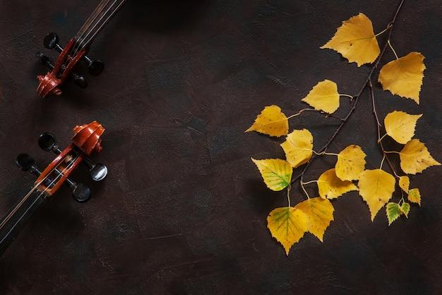 Zwei violinen und birkenzweig mit gelbem herbstlaub.