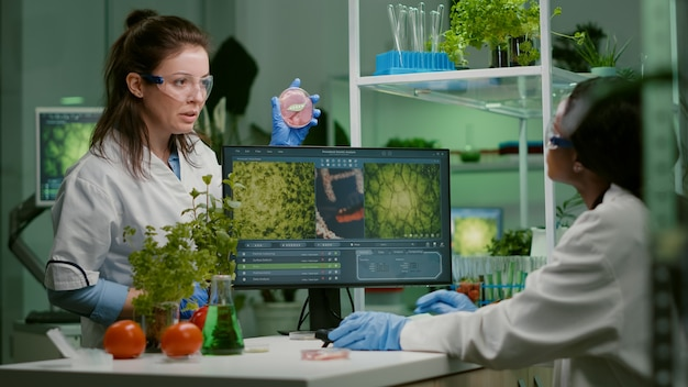 Zwei wissenschaftler sprechen über eine vegane fleischprobe, die biotechnologie-know-how am computer eintippt