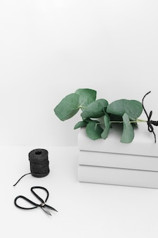 Zweig auf dem buch gestapelt mit der schwarzen spule und scissor getrennt auf weißem hintergrund