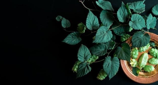 Zweig der hopfen auf einem dunklen weinlesehintergrund